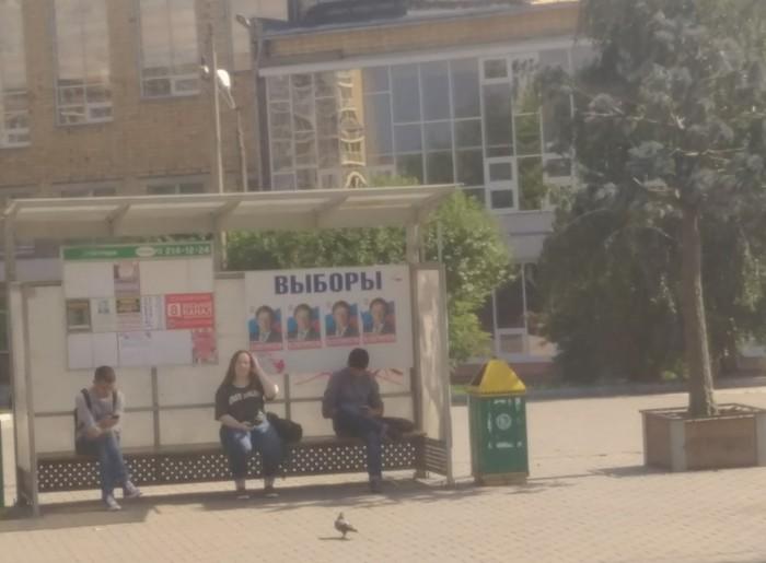 Выборы Фотография, Красноярск, Выборы, Политика, Негатив