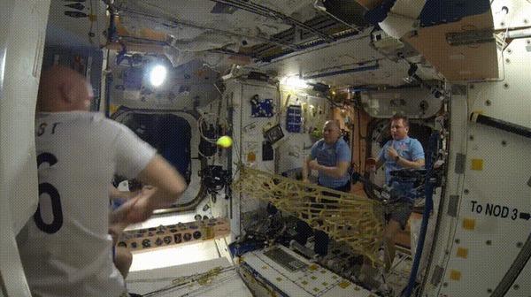 Теннис на орбите МКС, Космонавты, Теннис, Гифка