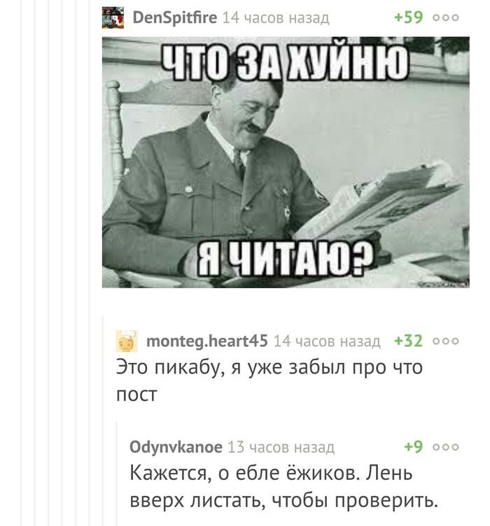 Когда читаешь комментарии на Пикабу Скриншот, Комментарии на пикабу, Адольф Гитлер, Мат