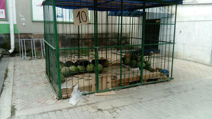 Тюрьма для арбузов Арбуз, Клетка, Решетка