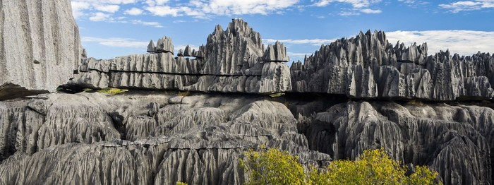 Мадагаскарский каменный лес Туризм, Мадагаскар, Скалы, Горы, Лес, Заповедник
