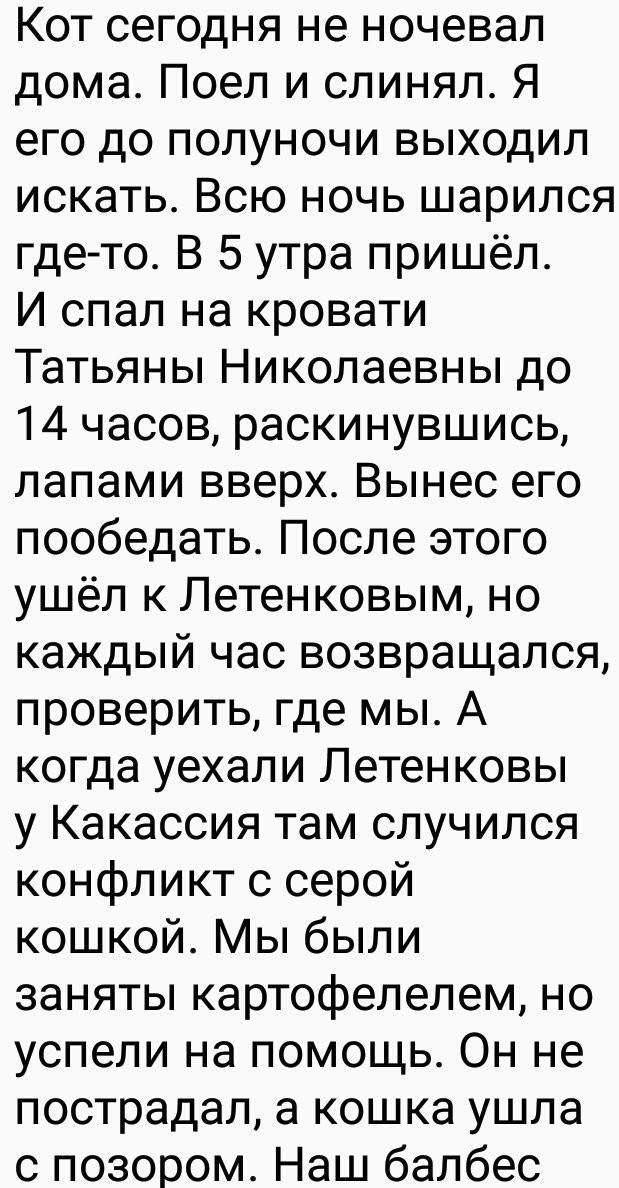 Мамин-Сибиряк Кот, Отчет, Мамин-Сибиряк, Длиннопост