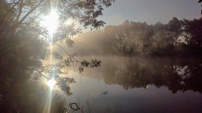 Утро на реке Фотография, Утро, Природа, Начинающий фотограф, Текст