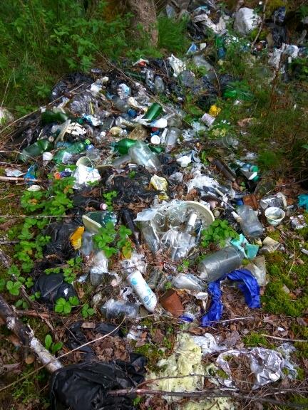 Марафон лесной уборки. Осталось собрать 229 мешков Чистый лес, Уборка, Мусор, Марафон лесной уборки, Чистомен, Охрана природы, Свалка, Длиннопост