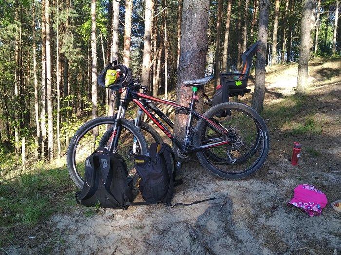 Катаемся с 3х летней дочерью по Московской области Велосипед, Московская область, Длиннопост