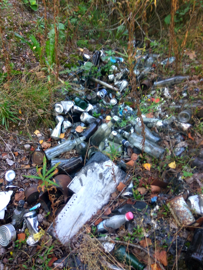 Марафон лесной уборки. Осталось собрать 143 мешка мусора Марафон лесной уборки, Чистый лес, Уборка, Мусор, Свалка, Чистомен, Охрана природы, Длиннопост