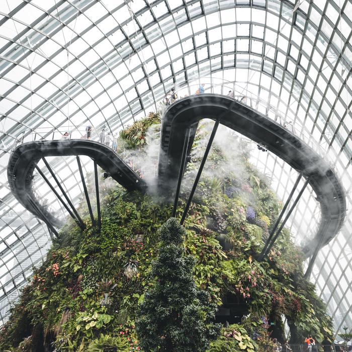 Сингапур,Cloud Forest Сингапур, Азия, Сад, Облака, Архитектура, Путешествия, Фотография