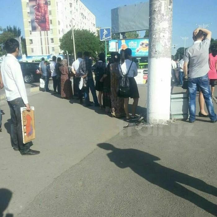 Сентябрь в Ташкенте.