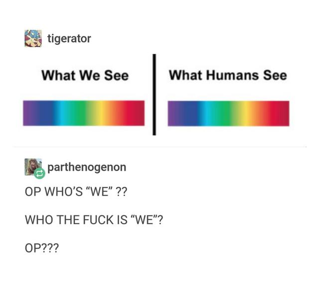 Что видим мы, что видят люди Люди, Мы