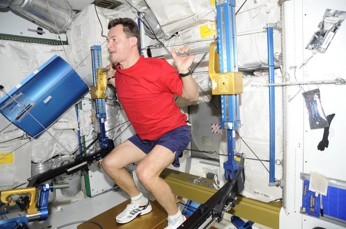 Важные открытия сделанные на МКС. Космос, МКС, Наука, Длиннопост, ISS, NASA, Роскосмос