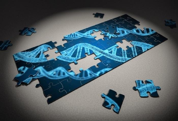 От генома к клинической медицине Генетика, Постгеномная медицина, Биоинформатика, Копипаста, Длиннотекст, Длиннопост