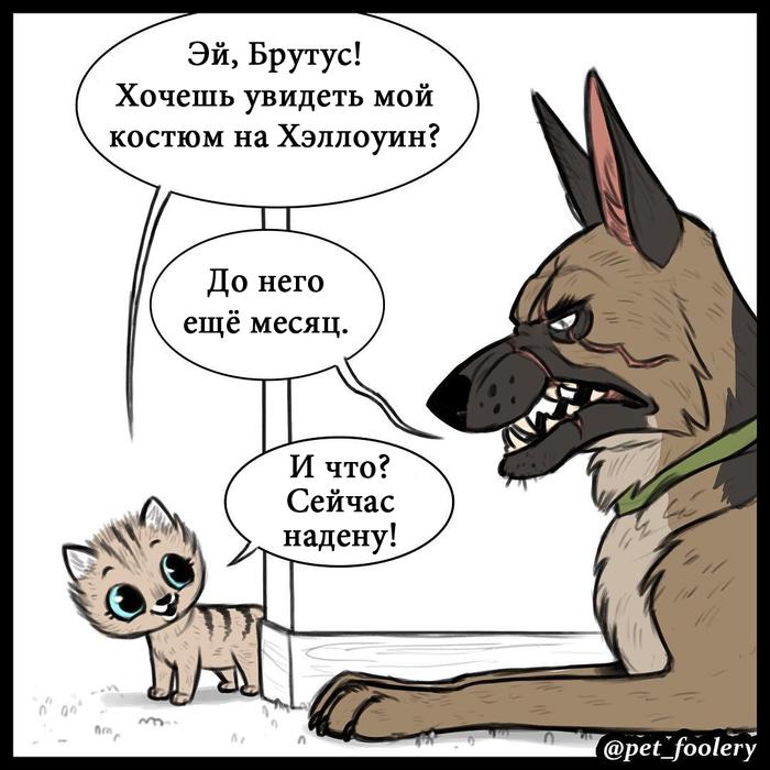 Быть страшным Комиксы, Животные, Добрый, Длиннопост, Дружба, Хэллоуин, Pet_foolery