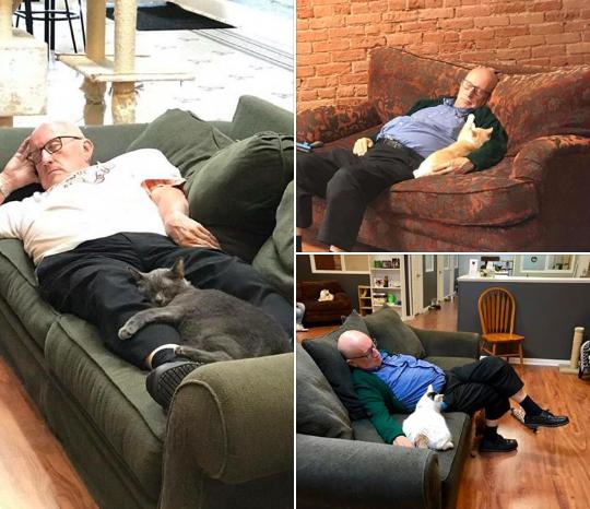 Добрая история: фотки дедули с котиками помогают приюту Кот, Приют для животных, Животные, Добро, Милота, Добрые дела, Люди и кошки