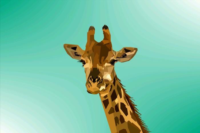 Animal Картинки, Животные, Длиннопост