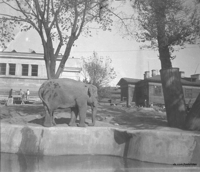 Москва, Саратов 1930-е Фотография, Москва, Саратов, 1930-е, Lostslides, Длиннопост