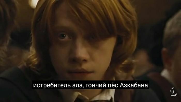 Охотник на черных магов Гарри Поттер, Грозный глаз, Хогвартс, Переозвучка, Длиннопост