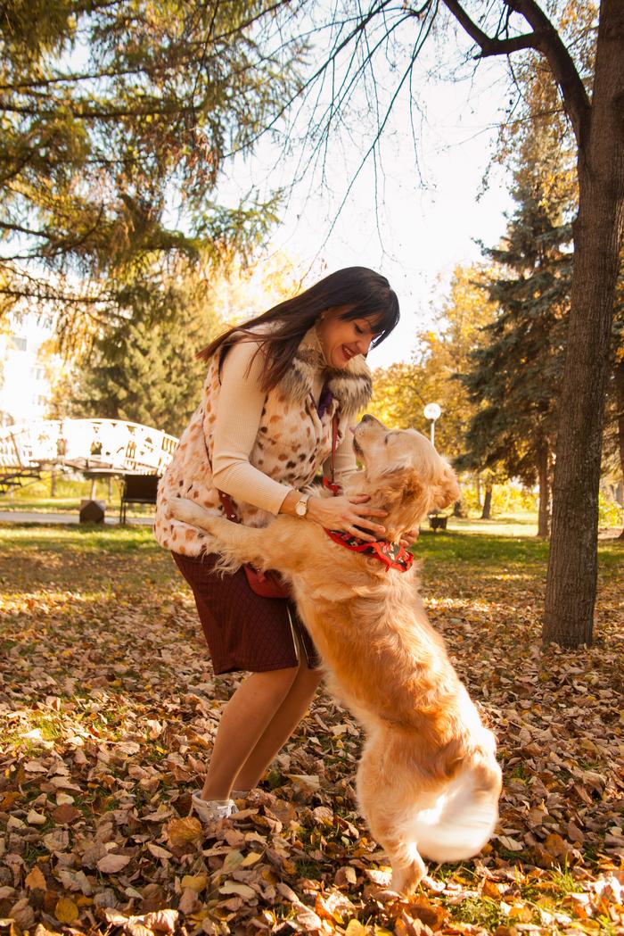 Пост любви к собакам Собаки и люди, Домашний любимец, Собака, Животные, Длиннопост, Фотография