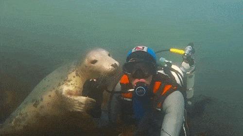 Привет, миленький, давно ты не заплывал ко мне