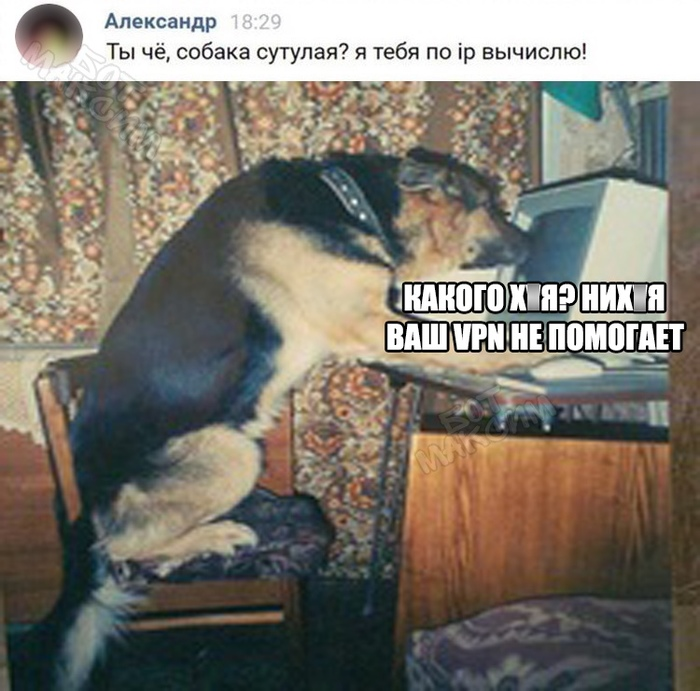 #ВГОЛОС