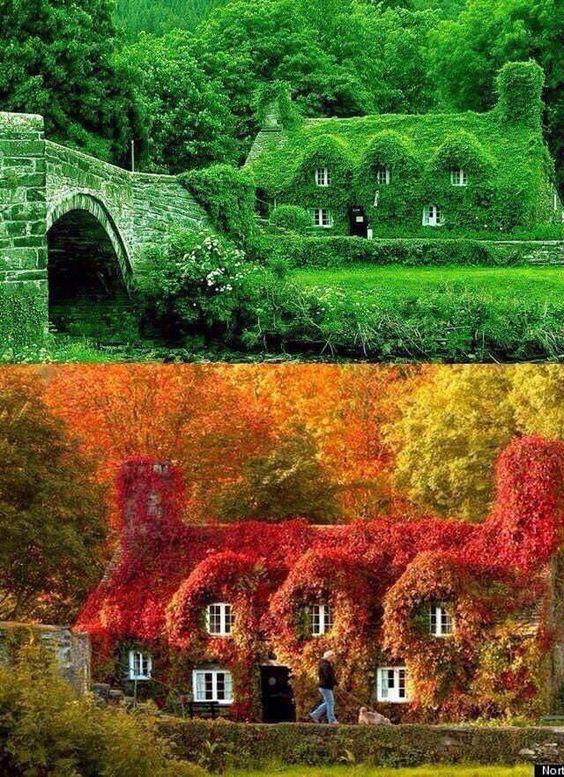 Сезоны в Уэльском городке Лланруст