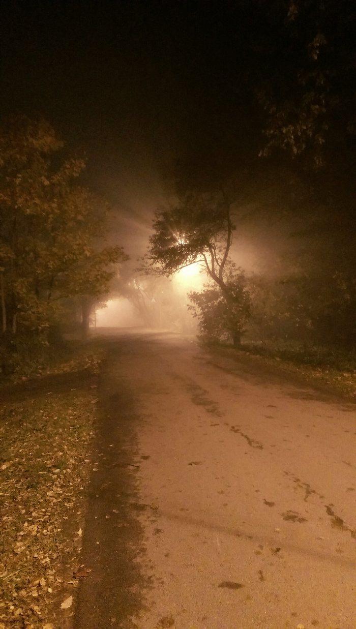 Когда-нибудь я уйду в этот туман и не вернусь