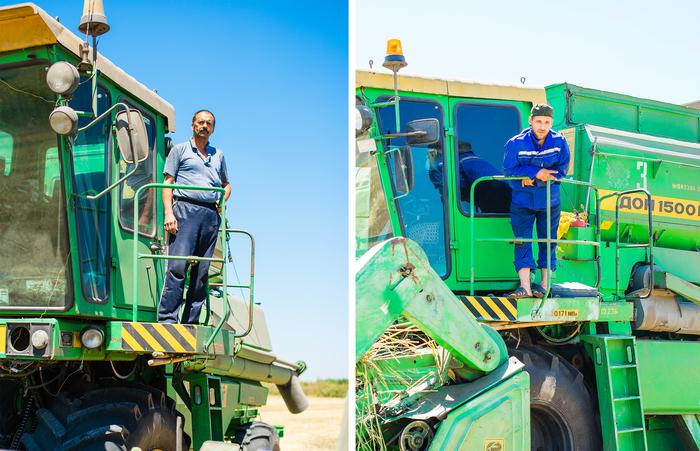 Стандарты мужской привлекательности Сельское хозяйство, Колхоз, Работа, Человек, С праздником, Длиннопост