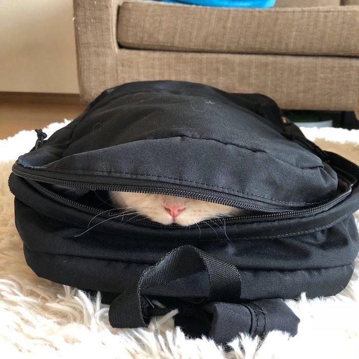 Рюкзак собран