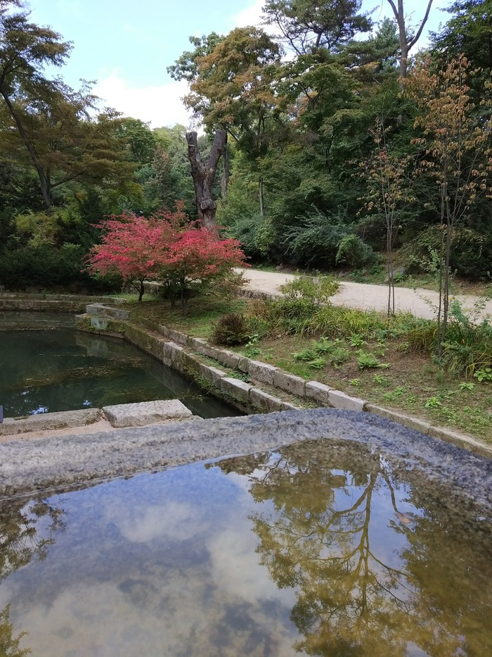 Осень в Южной Корее Южная Корея, Осень, Природа, Красота природы, Путешествия, Длиннопост