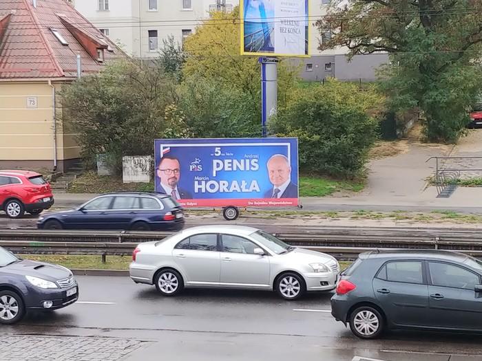 А Польша тем временем готовится к выборам... Польша, Выборы, Шутник
