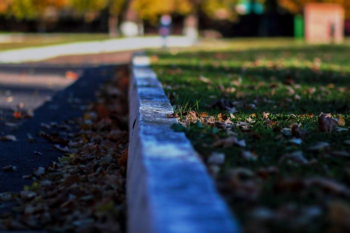 Краски осени Начинающий фотограф, Canon, Canon 600D, Осень, Фотография, Длиннопост