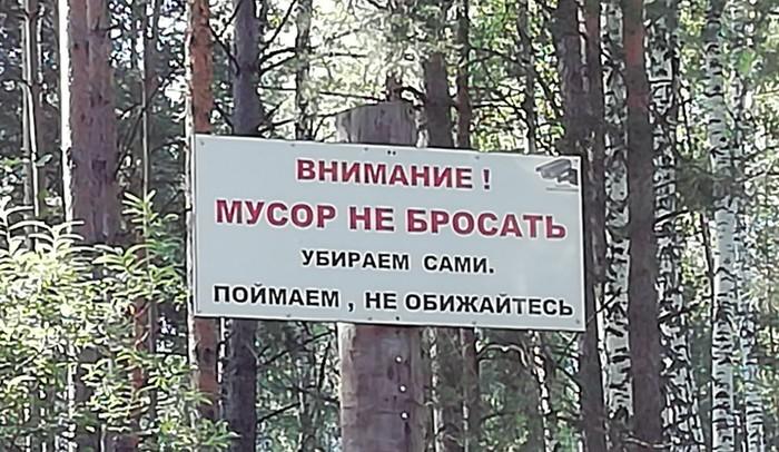 Где-то в лесу Лес, Мусор, Фотография