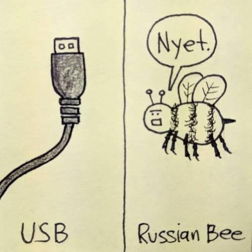 Просто разные стандарты Юмор, Смешное, Шутка, Комиксы, USB, Пчелы, Russia vs Usa, Россия