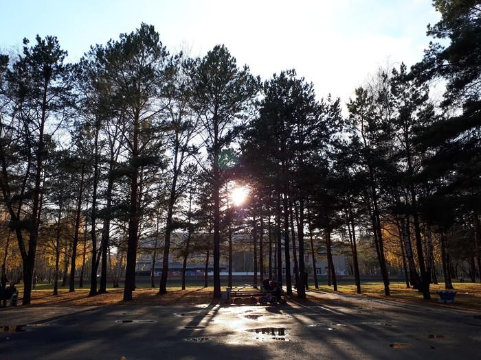 Ловушка для солнца Солнце, Природа, Мои фото, Длиннопост