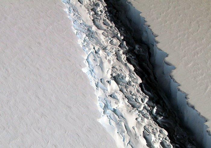 Белка с жёлудем. Ледниковый период, Юмор