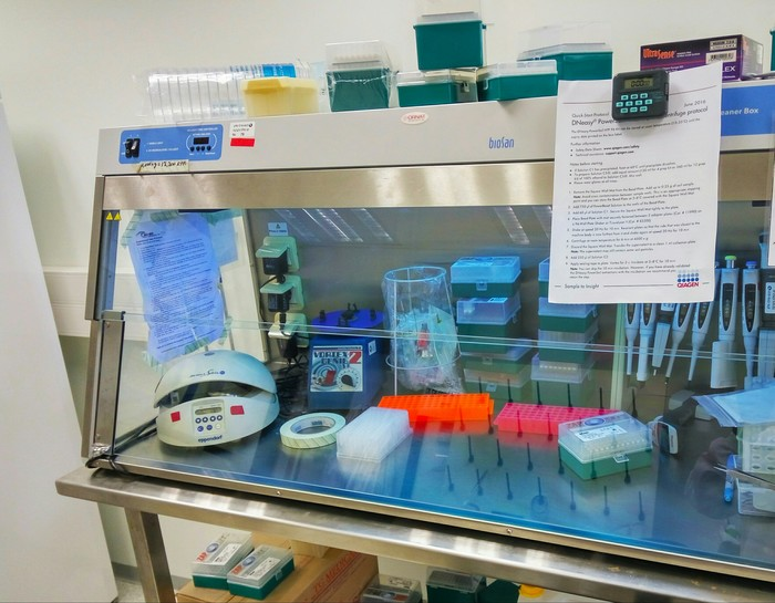 Один день в лаборатории ДНК, Лаборатория, Биология, Молекулярная биология, Длиннопост