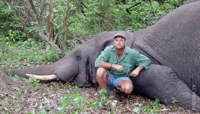 Дикие животные мстят браконьерам. Карма в действии. Браконьеры, Карма, Животные, Длиннопост, Месть