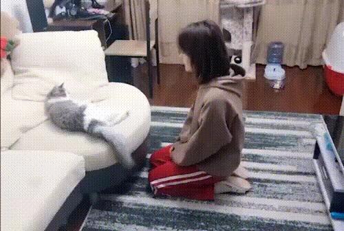 Сейчас я научу тебя языку жестов...