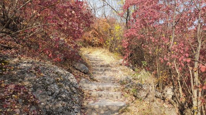 Осень в Молдове Длиннопост, Фото на тапок, Молдова, Осень