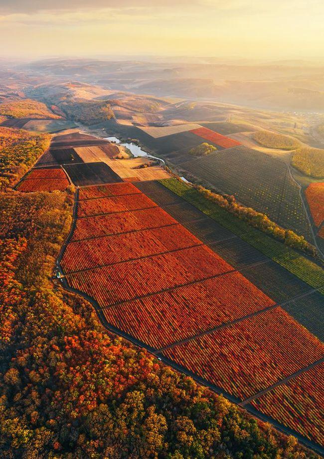 Осень в Молдовеphoto by  Maxim Chumash
