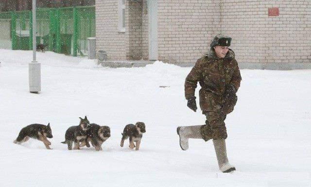 Будущие пограничники на первой тренировке