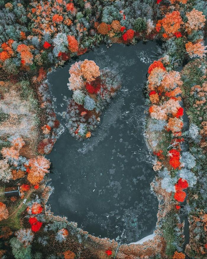 Осень на границе Ленинградской и Псковской области. Осень, Природа, Красота природы, Дикая природа, Фотография, Красота, Россия, Длиннопост