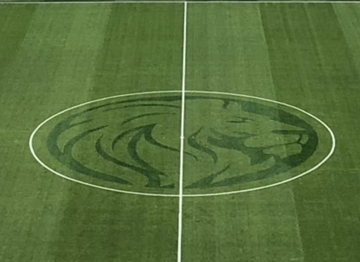 Агрономы стадиона Санкт-Петербург на высоте Спорт, Футбол, Рпл, Газон, Лев, Зенит