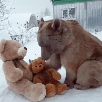 У каждого должен быть свои медвежонок