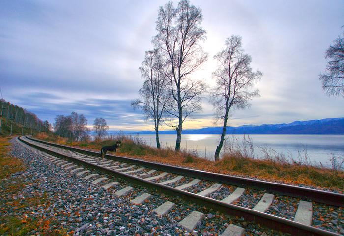 Кругобайкальская железная дорога в последний день осени Байкал, КБЖД, Фотография, Природа, Туризм, Длиннопост