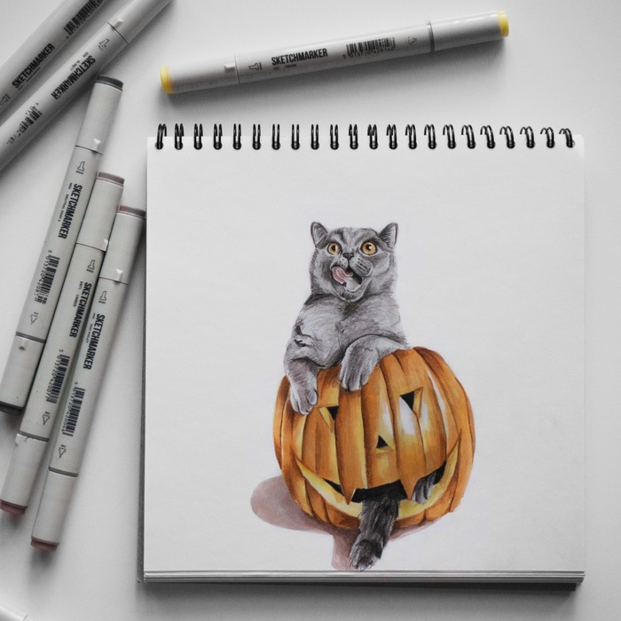 Котик в тыкве. Кот, Тыква, Арт, Животные, Хэллоуин, Рисунок