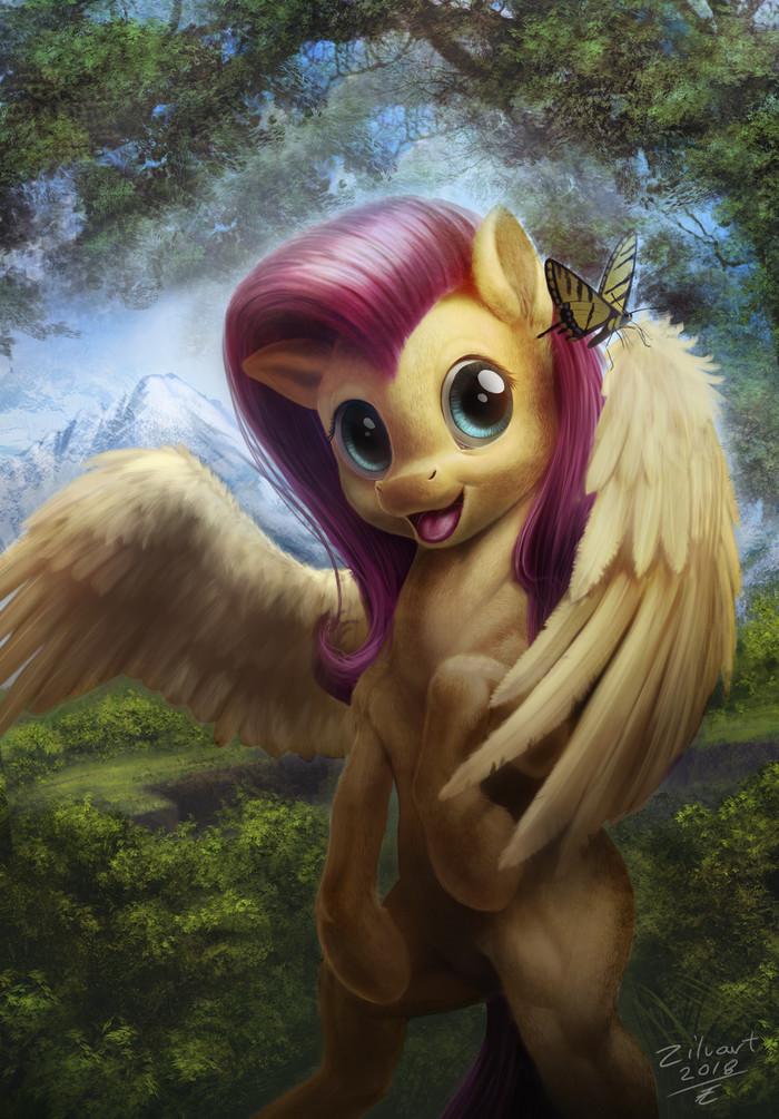Flutteshy My Little Pony, Fluttershy, Zilvart, Бабочка