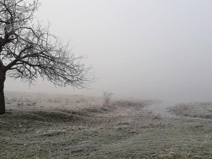 Утренний туман на водоеме Туман, Рыбалка, Природа, Осень, Длиннопост