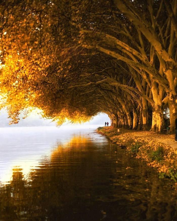 Осеннее место для прогулок