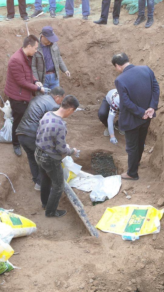Древние монеты весом 460 кг найдены в Шэньси Деньги, Археологические раскопки, Китай, Длиннопост