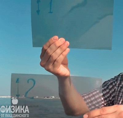 Поляризационный фильтр Физика, Наука, Эксперимент, Опыт, Познавательно, Гифка, Поляризация